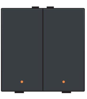 Tweevoudige lichtbediening met led, Black Coated - 161-52002